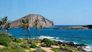 indigenious-hawaii-sea